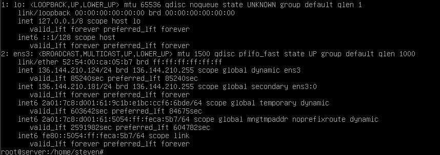 debian 9 ip a output with 2 ips
