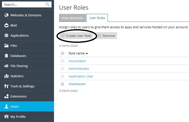 plesk user roles create user role