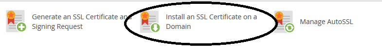 whm install a certificate on a domain