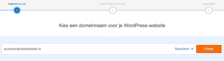 Vul je domeinnaam in en klik op 'Check'